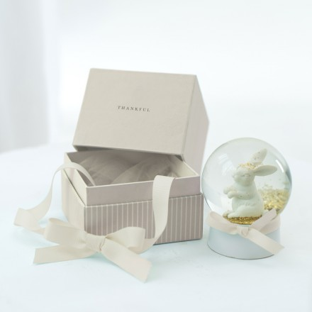 Rabbit Globe in a Box